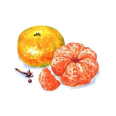 Vinilo Mandarina o mandarín aislados sobre fondo blanco