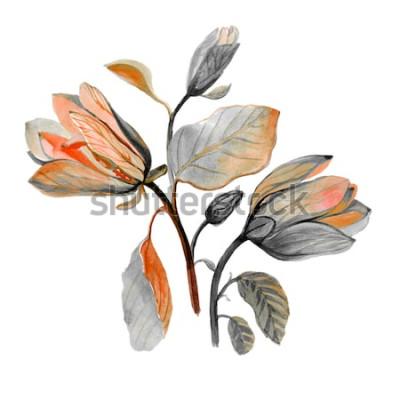 Vinilo Mano acuarela dibujada hermosa flor de magnolia. Composición de otoño flores verdes. Ramo de otoño