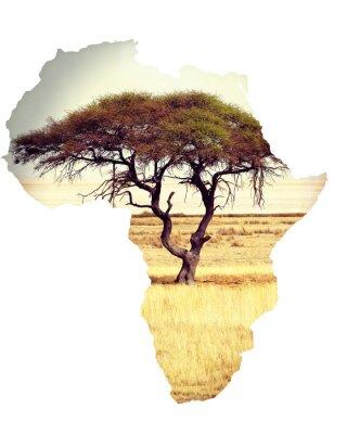 Vinilo Mapa de África concepto de continente con acacia