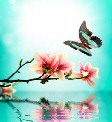 Vinilo Mariposa y flor de magnolia