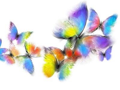 Vinilo mariposas