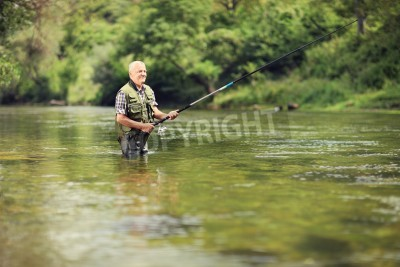 Vinilo Mature fisherman fishing in a river with a fishing rod