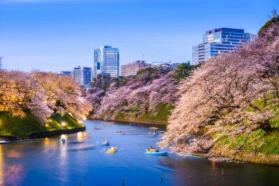 Vinilo Moat Imperial de Tokio en primavera