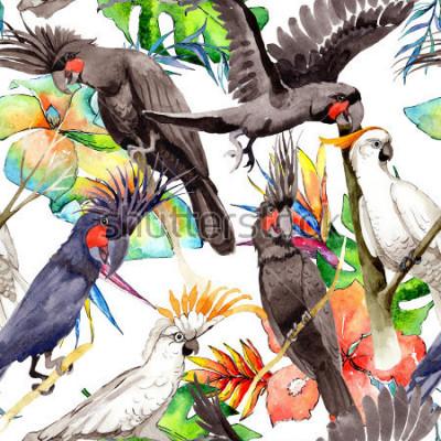 Vinilo Modelo blanco del loro del guacamayo del cielo en una fauna por estilo de la acuarela. Libertad salvaje, pájaro con alas voladoras. Pájaro de la acuarela para el fondo, la textura, el modelo, e