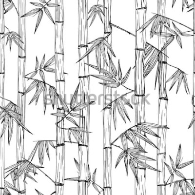 Vinilo Modelo inconsútil del bosque de bambú del vector. Fondo de bosquejo dibujado mano blanco y negro. Diseño para la moda de impresión textil, spa asiático y masaje, paquete de cosméticos, materiales de m