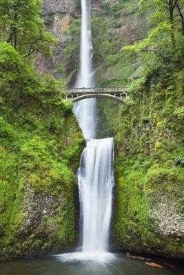 Vinilo Multnomah Falls in the Columbia River Gorge, Oregon, USA
