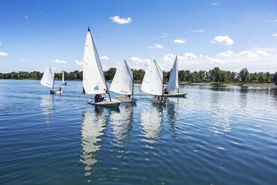Vinilo Navegando en el lago