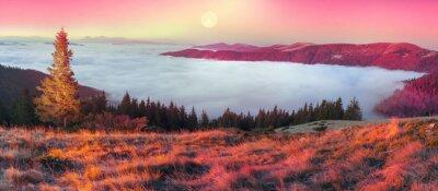 Vinilo Niebla en el otoño
