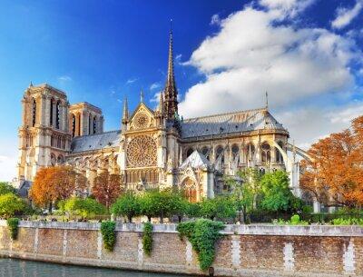 Vinilo Notre Dame de Paris Cathedral.Paris. Francia.