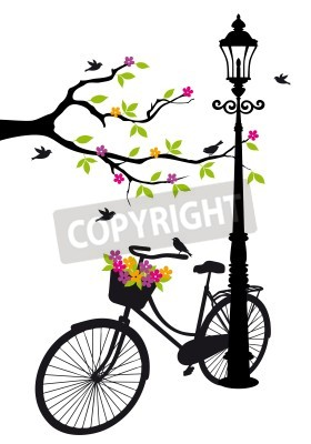 Vinilo old bicycle with lamp, flowers and tree