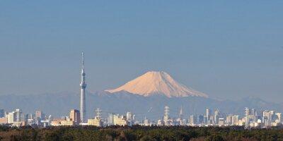 Vinilo Opinión de la ciudad de Tokio con el árbol del cielo de Tokio y la montaña Fuji