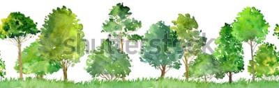 Vinilo paisaje de acuarela con árboles de hoja caduca, pino, arbustos y pasto, patrones sin fisuras, fondo de naturaleza abstracta, frontera de bosque, dibujado a mano ilustración