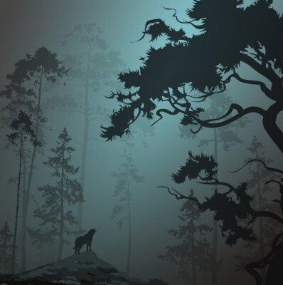 Vinilo Paisaje de niebla con silueta de bosque, pinos y lobo, claro de luna