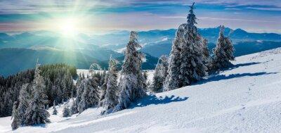 Vinilo Paisaje panorámico de invierno en las montañas. Árboles cubiertos de nieve y picos de montaña en la distancia.