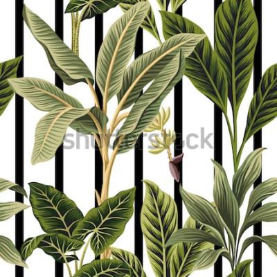 Vinilo Palmeras tropicales vintage, árbol de plátano floral sin fisuras patrón rayas blancas y negras de fondo. Fondo de pantalla exótico de la selva botánica.