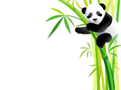 Vinilo panda de bambú
