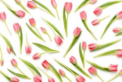 Vinilo Patrón de tulipán rosa en el bacjkground blanco.