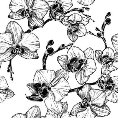 Vinilo Patrón transparente en blanco y negro con flores de orquídeas