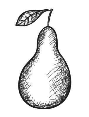 Vinilo pera