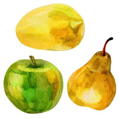Vinilo Pera, plátano dibujado a mano pintura acuarela ilustración sobre fondo blanco