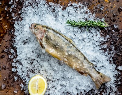 Vinilo pescado fresco