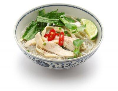 Vinilo Pho ga, arroz de pollo vietnamita sopa de fideos