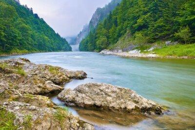 Vinilo Piedras en la orilla del río en las montañas. El río Dunajec Gorge