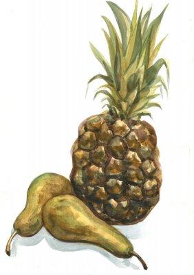 Vinilo Piña y pera sobre un fondo blanco. Pintura de acuarela