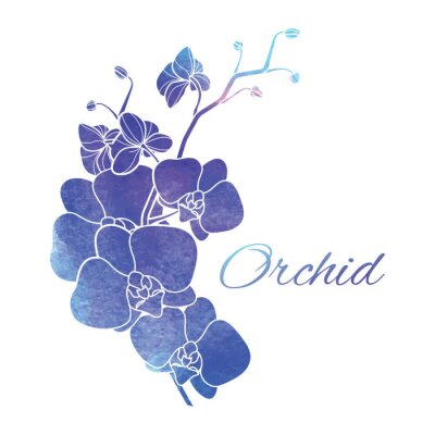 Vinilo Pintado Acuarela Orquídeas púrpuras