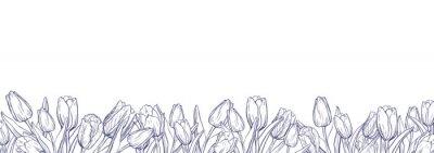 Vinilo Plantilla de banner horizontal plana con tulipanes de contorno sobre fondo blanco.