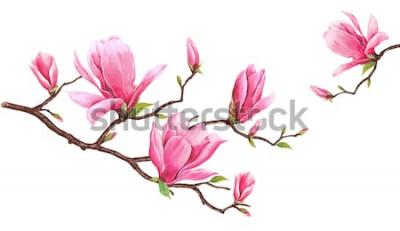 Vinilo Plantilla de tarjeta con magnolia acuarela. Pintura dibujada a mano sobre fondo blanco. Ilustración para tarjetas de felicitación, invitaciones y otros proyectos de impresión. Hay espacio para poner t