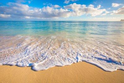 Vinilo Playas de Hawaii