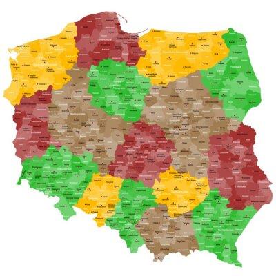 Vinilo Polen Crónica im Detail