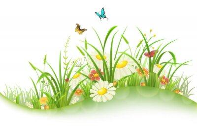 Vinilo Pradera de verano de primavera con hierba verde, flores y mariposas