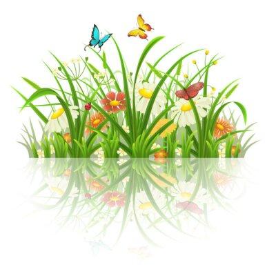 Vinilo Primavera de hierba, flores y mariposas con la reflexión sobre blanco