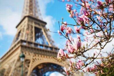 Vinilo Primavera en París