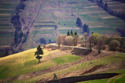 Vinilo Primavera soleada en el pueblo de montaña. Campos y colinas