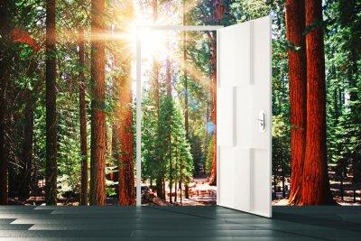 Vinilo Puerta abierta al concepto de bosque soleado
