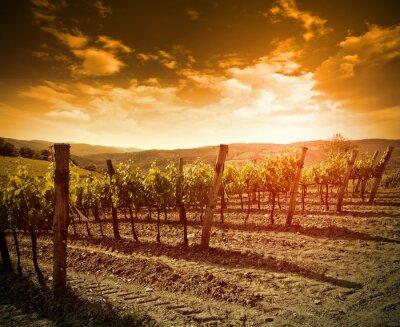 Vinilo puesta del sol