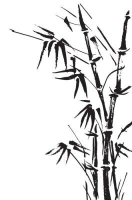 Vinilo Ramificaciones de bambú aislados en el fondo blanco. Vector