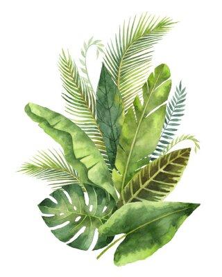 Vinilo Ramo de acuarela hojas tropicales y ramas aisladas sobre fondo blanco.