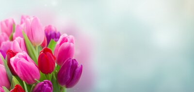 Vinilo ramo de flores de tulipán rosa y morado