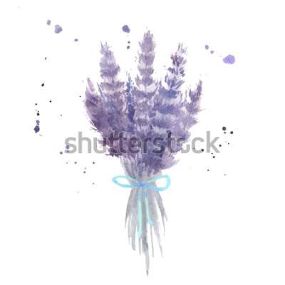 Vinilo Ramo de lavanda acuarela. Dibuje flores de lavanda con cinta azul y salpicaduras de acuarela. Ilustración vectorial aislado