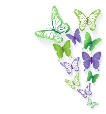 Vinilo Realistic Colorful Butterflies Isolated for Spring
