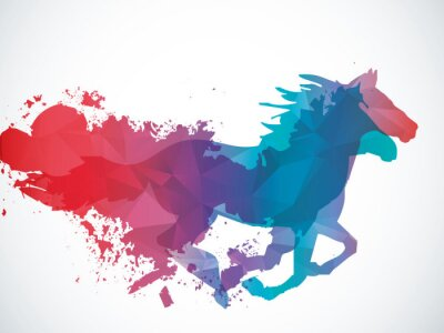 Vinilo Resumen caballo
