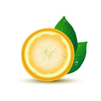 Vinilo Resumen de limón con hojas y gotas sobre fondo blanco