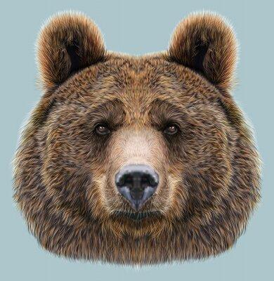 Vinilo Retrato ilustrado del oso en fondo azul