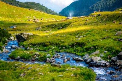 Vinilo Río de la montaña
