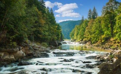 Vinilo río de montaña