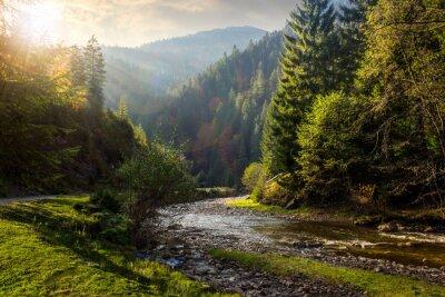 Vinilo río del bosque en las montañas